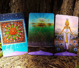 tarot card reading 5
