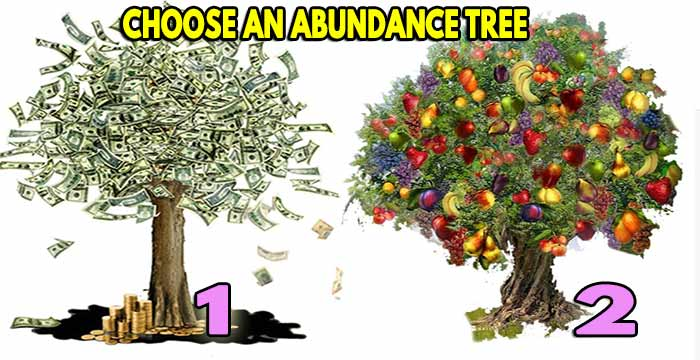 Spiritual guide of the abundance