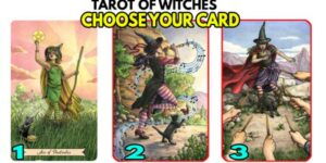 🌙Use the TAROT of the Witches