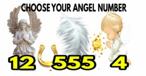 Angel numbers for November