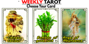 🌟Your Weekly tarot 15-22 November