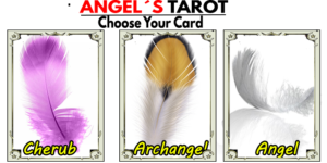 👼Your Angels tarot for November